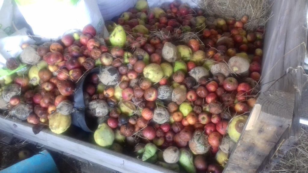 Appels & Kweeperen